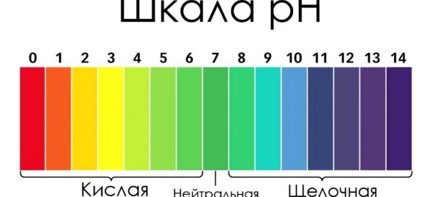 Зачем знать шкалу pH? Круг Зиннера.